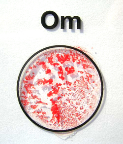 Spenglersan-OM (als Beispiel einer positiven Reaktion)