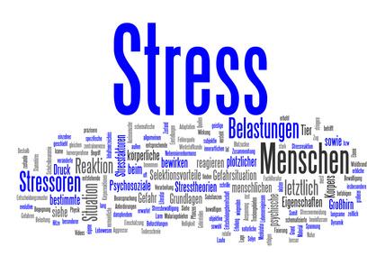 Cortisol, Stress und Nebennieren-Erschöpfung (Adrenal